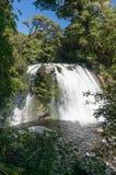 Καταρράκτης στο εθνικό πάρκο Te Urewera Στοκ Φωτογραφία