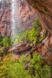 Καταρράκτης στο εθνικό πάρκο Zion στοκ εικόνες