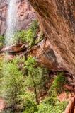 Καταρράκτης στο εθνικό πάρκο Zion στοκ φωτογραφία