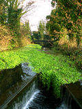 Καταρράκτης στο κανάλι του Γκραντ Τζάνκσον κοντά σε Uxbridge και Heathrow στο Λονδίνο Στοκ Εικόνα