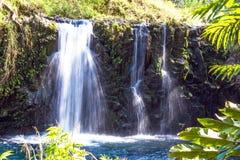 καταρράκτης της Χαβάης Maui Στοκ Εικόνα
