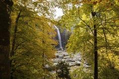 Καταρράκτης το φθινόπωρο Στοκ εικόνα με δικαίωμα ελεύθερης χρήσης