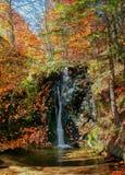 Καταρράκτης το φθινόπωρο Στοκ Εικόνες