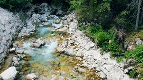 Καταρράκτης των νερών πηγής που ρέει κάτω από τις πέτρες Φρέσκες ροές του νερού βουνών πέρα από την πέτρα _ απόθεμα βίντεο