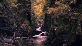Καταρράκτης φαραγγιών του Glen νεράιδων στο φθινόπωρο στη βόρεια Ουαλία απόθεμα βίντεο