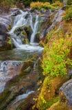 Καταρράκτης φθινοπώρου, ΑΜ Πιό βροχερό εθνικό πάρκο, πολιτεία της Washington στοκ εικόνες με δικαίωμα ελεύθερης χρήσης