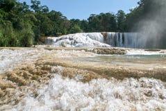 Καταρράκτης Azul Aqua σε Chiapas Στοκ Φωτογραφίες