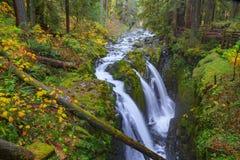 Καταρράκτης Duc κολλοειδούς διαλύματος στο τροπικό δάσος Στοκ Εικόνες