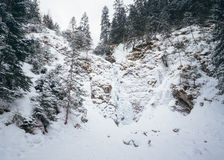 Καταρράκτης Siklawica κοντά σε Zakopane, Πολωνία Στοκ φωτογραφία με δικαίωμα ελεύθερης χρήσης