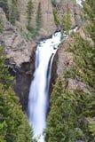 Καταρράκτης Yellowstone Στοκ εικόνες με δικαίωμα ελεύθερης χρήσης