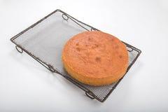 Κατασκευή των κέικ σφουγγαριών, μαγειρευμένο κέικ σε ένα παλαιό δροσίζοντας ράφι Στοκ Εικόνες