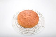 Κατασκευή των κέικ σφουγγαριών, μαγειρευμένο κέικ στο στρογγυλό δροσίζοντας ράφι Στοκ Εικόνες
