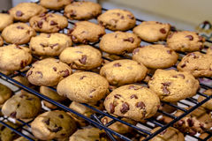 Κατασκευή των μπισκότων τσιπ σοκολάτας Στοκ Εικόνες