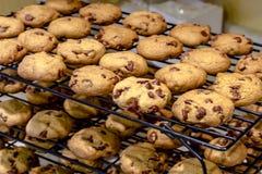 Κατασκευή των μπισκότων τσιπ σοκολάτας Στοκ φωτογραφία με δικαίωμα ελεύθερης χρήσης