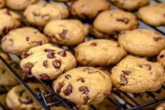 Κατασκευή των μπισκότων τσιπ σοκολάτας Στοκ Εικόνα