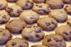 Κατασκευή των μπισκότων τσιπ σοκολάτας Στοκ εικόνα με δικαίωμα ελεύθερης χρήσης