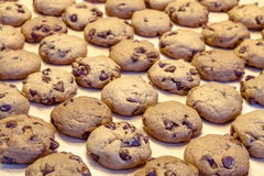 Κατασκευή των μπισκότων τσιπ σοκολάτας Στοκ φωτογραφίες με δικαίωμα ελεύθερης χρήσης