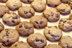 Κατασκευή των μπισκότων τσιπ σοκολάτας Στοκ Φωτογραφία
