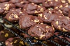 Κατασκευή των μπισκότων τσιπ φυστικοβουτύρου σοκολάτας Στοκ εικόνες με δικαίωμα ελεύθερης χρήσης