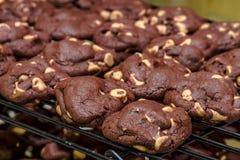 Κατασκευή των μπισκότων τσιπ φυστικοβουτύρου σοκολάτας Στοκ Εικόνες