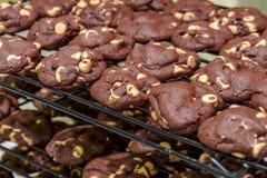 Κατασκευή των μπισκότων τσιπ φυστικοβουτύρου σοκολάτας Στοκ εικόνα με δικαίωμα ελεύθερης χρήσης