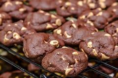 Κατασκευή των μπισκότων τσιπ φυστικοβουτύρου σοκολάτας Στοκ Φωτογραφίες