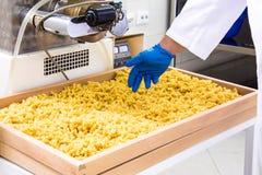 Κατασκευή των τροφίμων ζυμαρικών, διαδικασίας και χωρισμού Στοκ φωτογραφίες με δικαίωμα ελεύθερης χρήσης