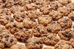 Κατασκευή Oatmeal των μπισκότων σταφίδων Στοκ φωτογραφία με δικαίωμα ελεύθερης χρήσης
