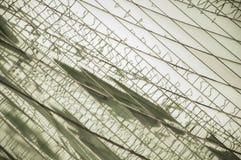 Κατασκευασμένα μεγάλα παράθυρα Στοκ φωτογραφία με δικαίωμα ελεύθερης χρήσης