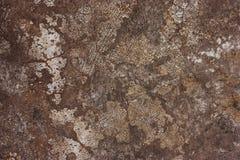 Κατασκευασμένοι τοίχοι με το ρύπο Στοκ Φωτογραφίες