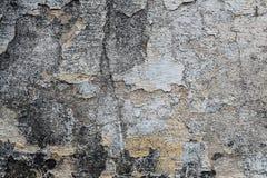 Κατασκευασμένοι τοίχοι με το ρύπο Στοκ φωτογραφίες με δικαίωμα ελεύθερης χρήσης