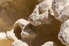 Κατασκευασμένος βράχος ασβεστόλιθων με την επιφάνεια σφουγγαριών διάβρωσης Στοκ εικόνες με δικαίωμα ελεύθερης χρήσης