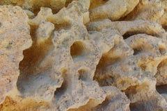 Κατασκευασμένος βράχος ασβεστόλιθων με την επιφάνεια σφουγγαριών διάβρωσης Στοκ Εικόνες