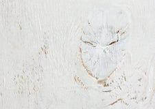 Κατασκευασμένο άσπρο ξύλινο φορεμένο παλαιό υπόβαθρο Στοκ Εικόνες