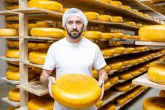 Κατασκευαστής τυριών στην αποθήκευση τυριών στοκ φωτογραφία