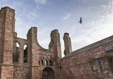 Καταστροφές αβαείων Arbroath στη Σκωτία Στοκ φωτογραφίες με δικαίωμα ελεύθερης χρήσης