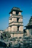 Καταστροφές επί του archeological τόπου Palenque, Chiapas, Μεξικό Στοκ εικόνες με δικαίωμα ελεύθερης χρήσης