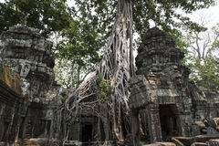 Καταστροφές και ναοί Angkor wat η Καμπότζη συγκεντρώνει siem Στοκ Εικόνα