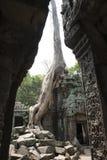 Καταστροφές και ναοί Angkor wat η Καμπότζη συγκεντρώνει siem Στοκ Φωτογραφίες