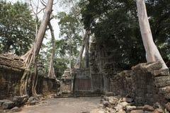 Καταστροφές και ναοί Angkor wat η Καμπότζη συγκεντρώνει siem Στοκ φωτογραφία με δικαίωμα ελεύθερης χρήσης