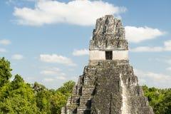 Καταστροφές της Γουατεμάλα Tikal Στοκ εικόνες με δικαίωμα ελεύθερης χρήσης