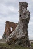Καταστροφές της εκκλησίας σε Trzesacz, βαλτική ακτή Στοκ Εικόνες