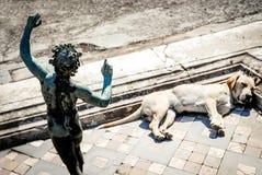 Καταστροφές της Πομπηίας, ύπνοι σκυλιών στο impluvium του σπιτιού του φαύνου Στοκ Εικόνα