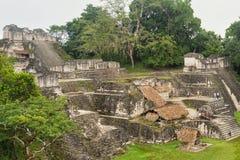 Καταστροφές της Maya Tikal, κοντά σε Flores, Γουατεμάλα Στοκ εικόνες με δικαίωμα ελεύθερης χρήσης