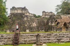 Καταστροφές της Maya Tikal, κοντά σε Flores, Γουατεμάλα Στοκ εικόνα με δικαίωμα ελεύθερης χρήσης