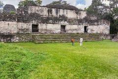 Καταστροφές της Maya Tikal, κοντά σε Flores, Γουατεμάλα Στοκ Εικόνες