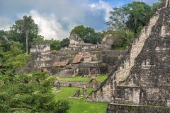 Καταστροφές της Maya Tikal, κοντά σε Flores, Γουατεμάλα Στοκ Εικόνα