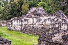 Καταστροφές της Maya Tikal, κοντά σε Flores, Γουατεμάλα Στοκ Φωτογραφία