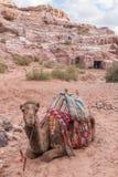 Καταστροφές της Petra στην Ιορδανία Στοκ Εικόνες