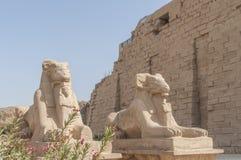 Καταστροφές του αρχαίου αιγυπτιακού ναού Στοκ φωτογραφίες με δικαίωμα ελεύθερης χρήσης